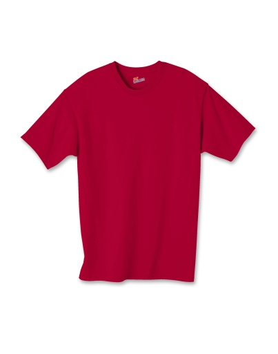hanes youth authentic-t t-shirt - 5450 men hanes